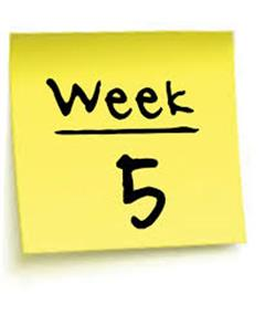 News From Week 5- Remote Teaching and Learning
