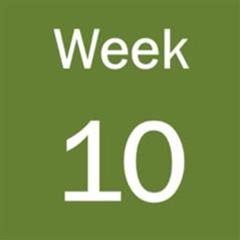 Week 10 - Remote and In-person Teaching and Learning